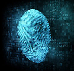 Digital Forensic Systems